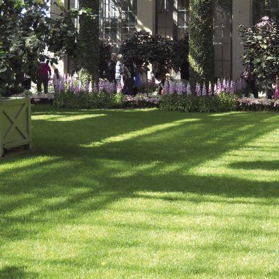 Prato artificiale erba sintetica tappeto verde moquette al metro quadro